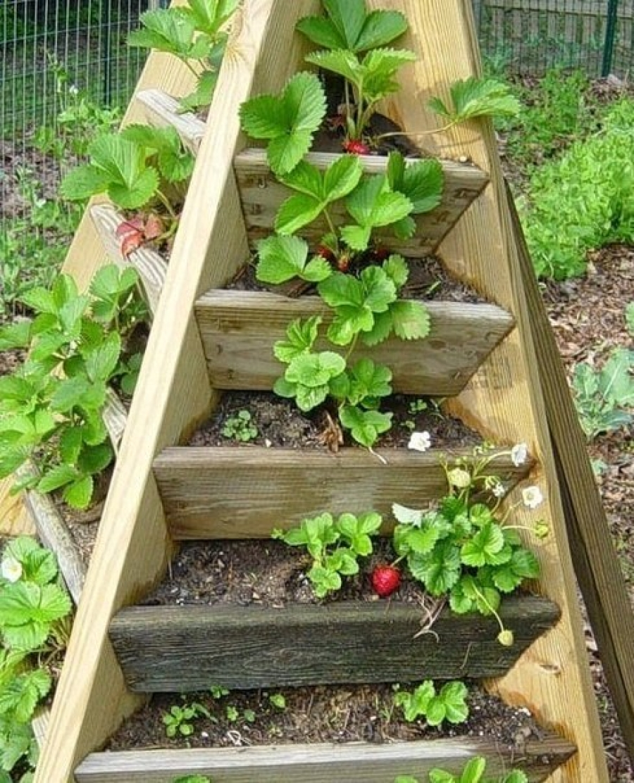 Оригинальные идеи для сада и огорода