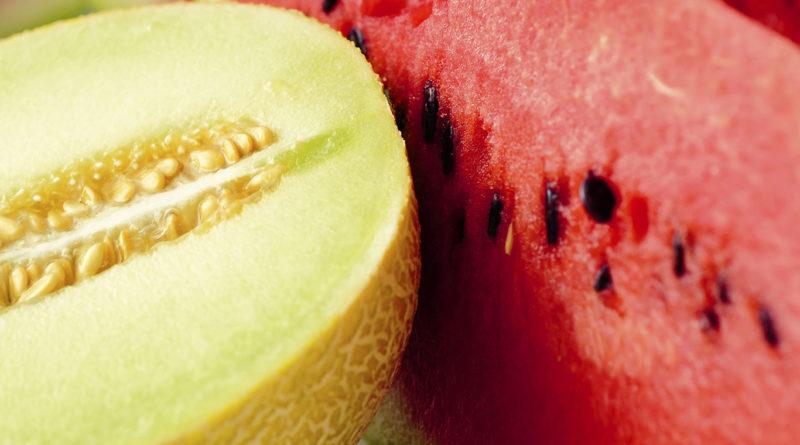 Лечебные свойства арбуза и дыни