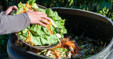 Как правильно готовить компост?